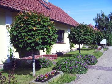 Müritz-Hof Knust - Bauernhof