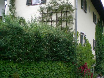 Bannert - Königssee 2