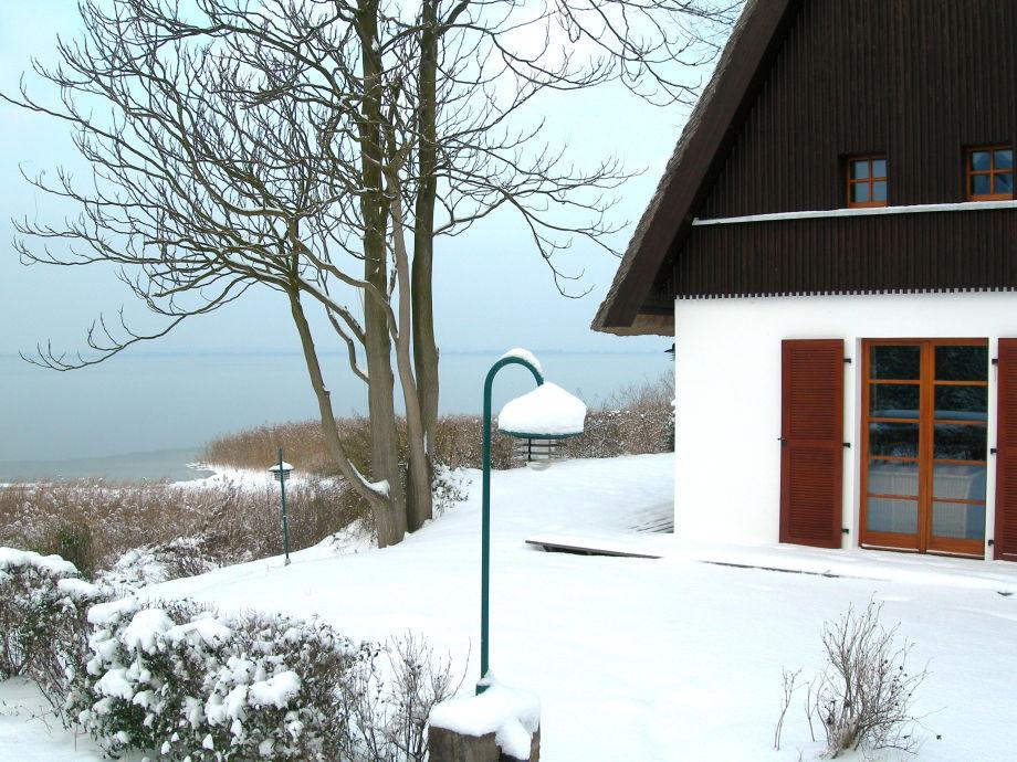 Der Fuchsbau im Schnee