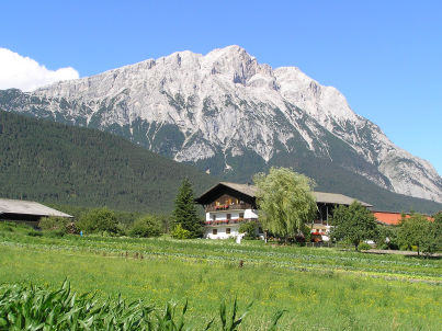 Blumenwiese - Urlaub am Bauernhof