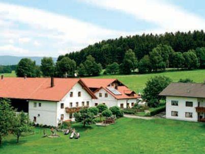 Peterhof - Ferienhaus Berghütte