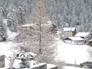 Ferienwohnung Bergenia Alpenarena