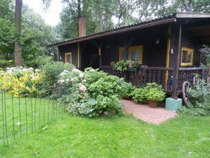 Ferienhaus Das Eulenhaus