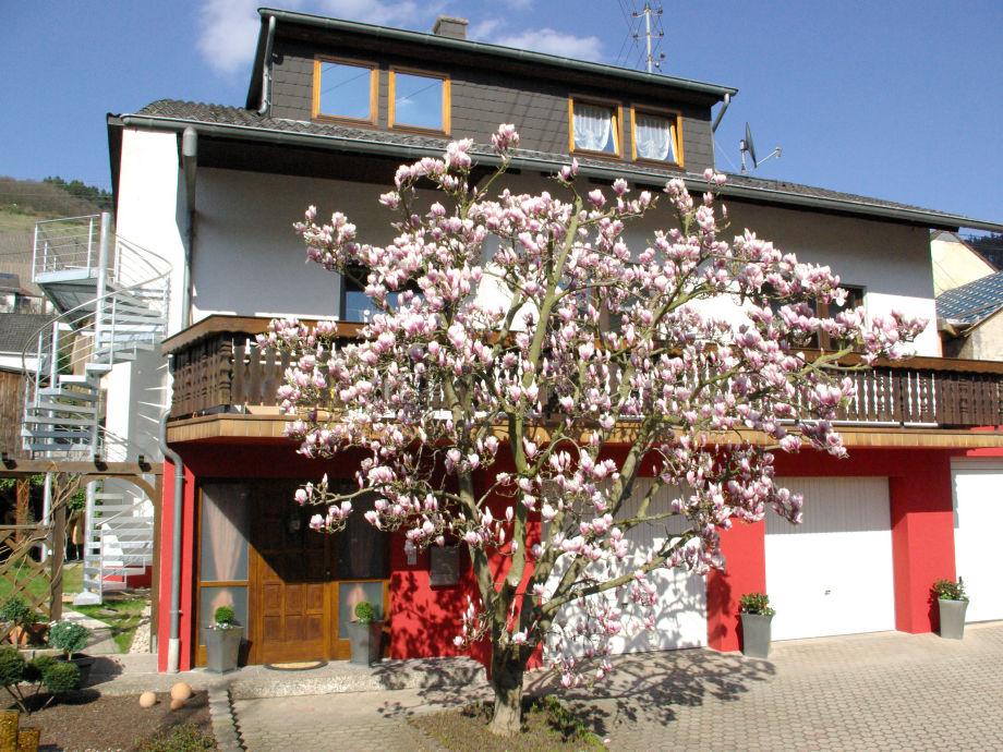 Haus Ferienwohnung Magnolia