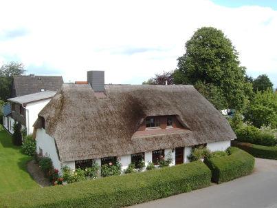 """Seemööw"" auf dem Ferienhof Koch"