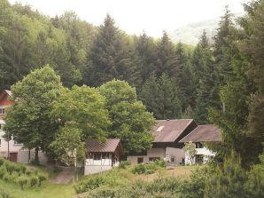 Ferienwohnung Waldblick im Winterbacherhof