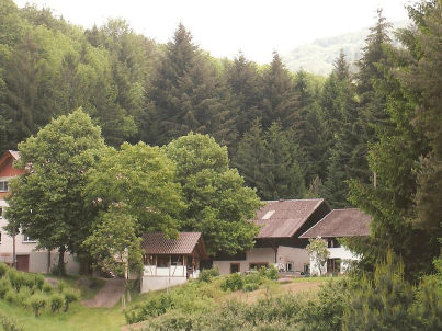 Waldblick im Winterbacherhof