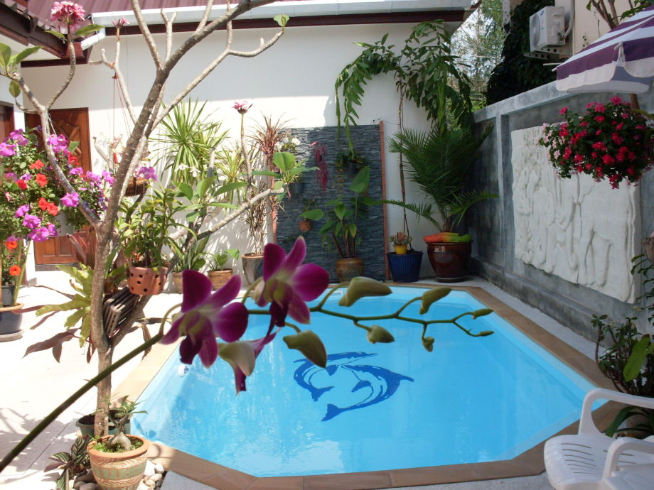 The pool for the guests