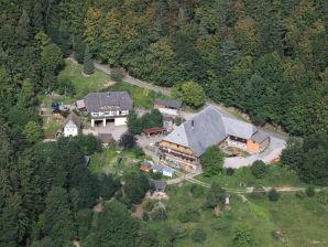Ferienwohnung auf dem Storzenhof