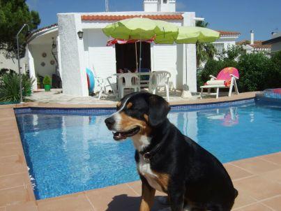 Casa Eivissa mit großem Privatpool