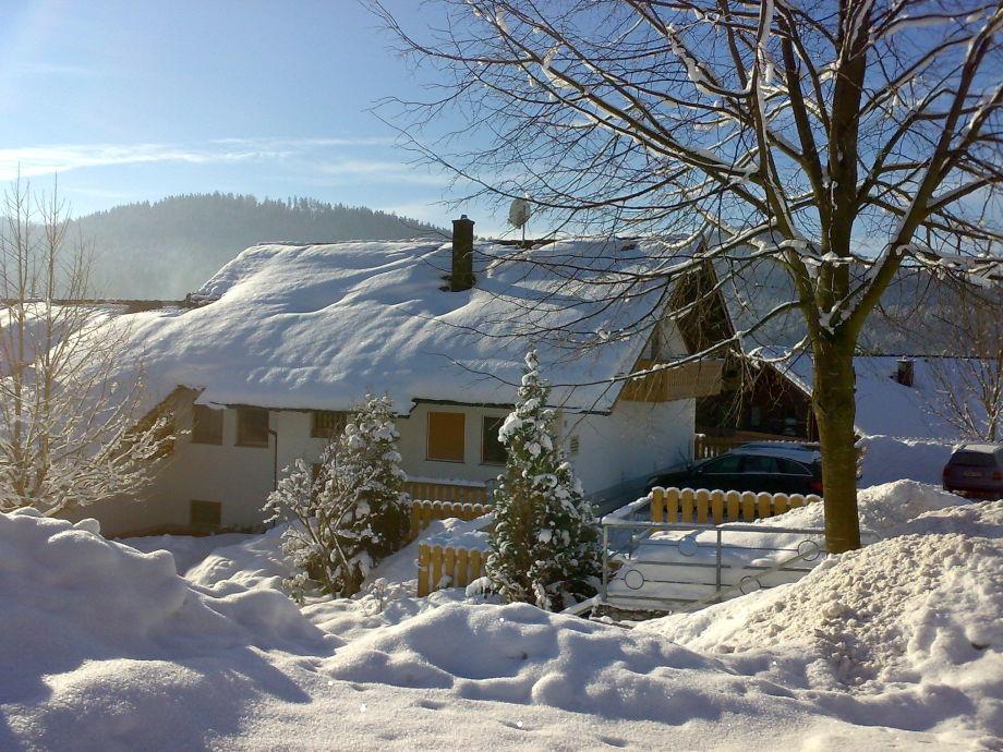 Winterbild Ferienwohnung Andres Piatka in Bodenmais