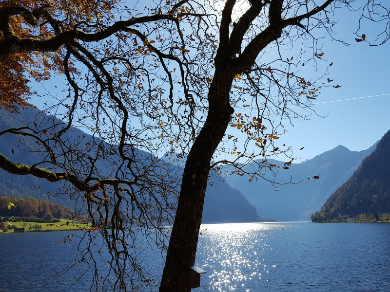 Holiday apartment in the Heart of the Salzkammergut