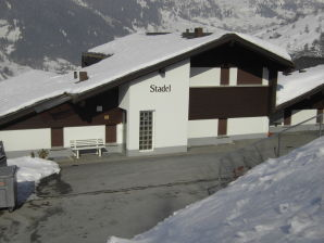 Holiday apartment im Haus Stadel