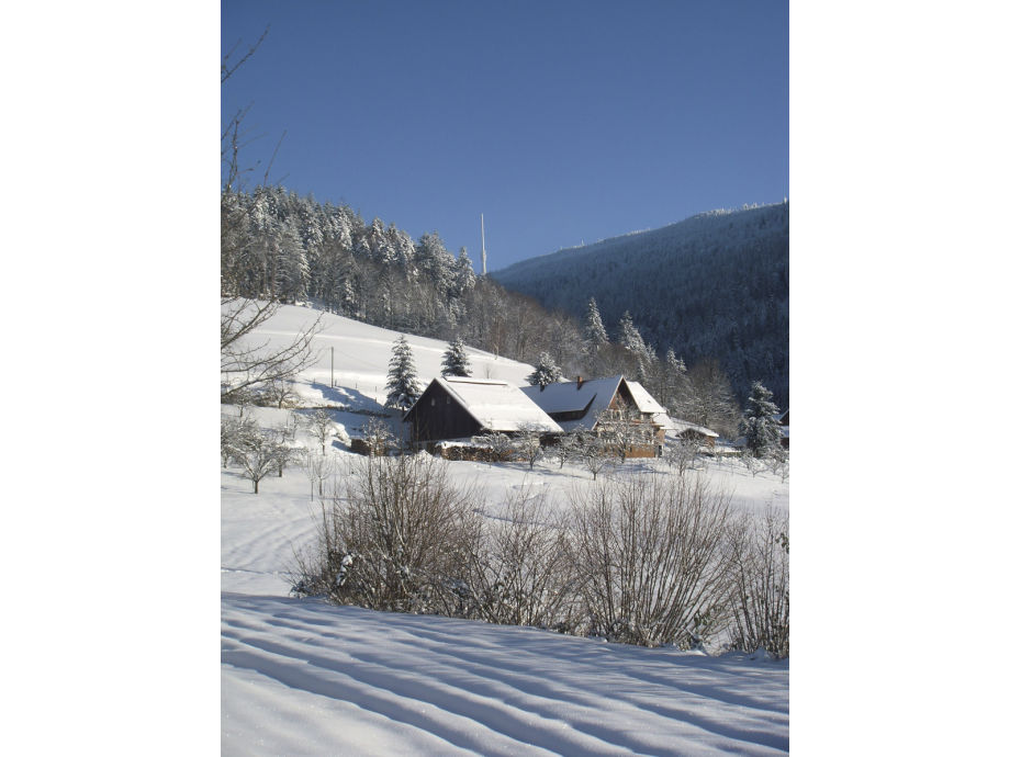 Kasimirhof im Winter