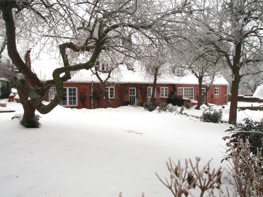 Bieberstein im Schnee