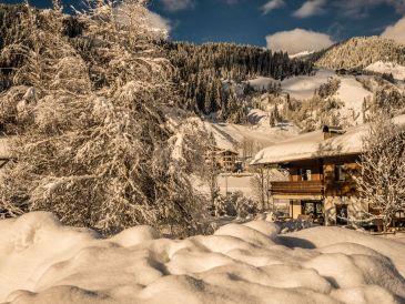 Ferienhaus Landhaus Kücherer Dorf 81