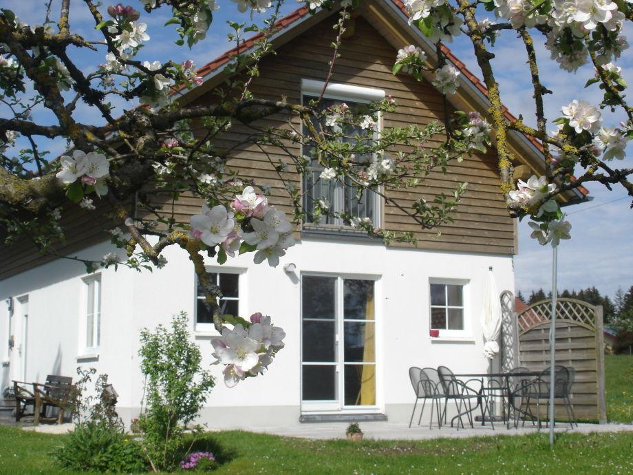 Unser Ferienhaus im Frühjahr