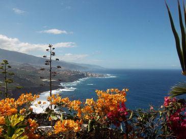 """Ferienwohnung 2 """"Paraiso"""" Teneriffa Nord - Nähe Puerto de la Cruz"""