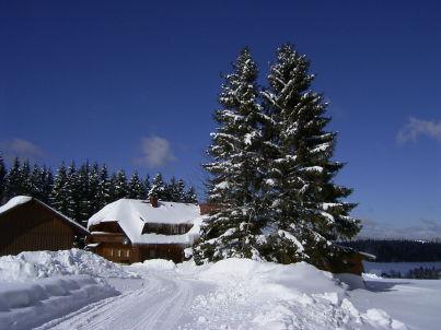 Reiner in Schonach im Schwarzwald