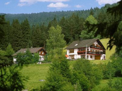 """Waldwiese im """"Ferienhaus Schenk"""""""