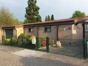 Ferienhaus Am Ginsterbusch