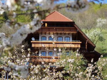 Ferienwohnung auf dem Ehrenmättlehof