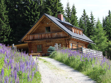 Skihütte Geierkogelhütte