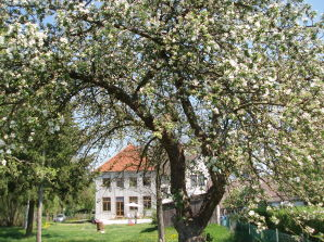 Ferienwohnung Alte Dorfschule