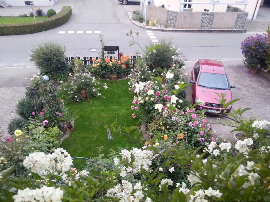 Blick aus der Ferienwohnung mit Parkplätzen