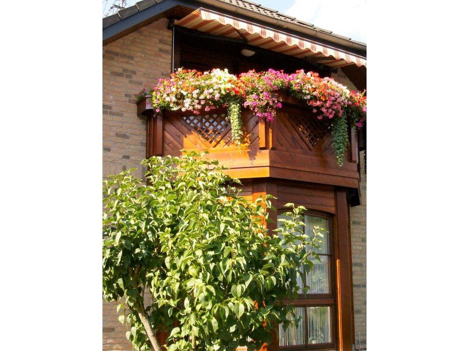 Ferienwohnung mit moselblick mosel familie georg hillen for Markise balkon mit tapeten von hammer