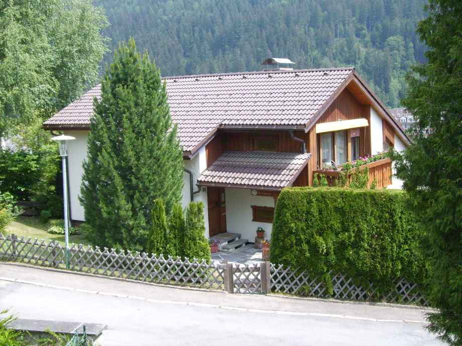 Outside view in summer