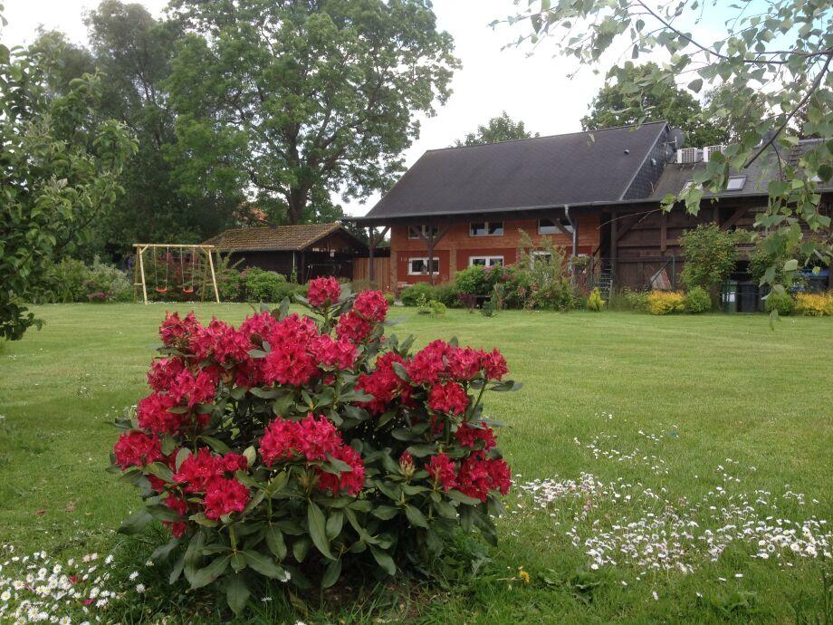 Vor dem Wohnhaus ein großer Garten für unsere Gäste.