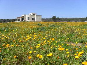 Ferienhaus Villa Lona, mit Meerblick