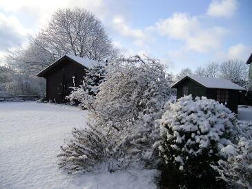 Ferienhaus Struve 1