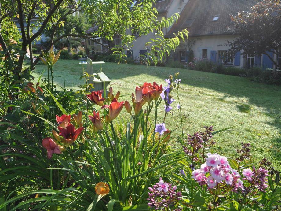 3500 m² schoen geblumten Garten
