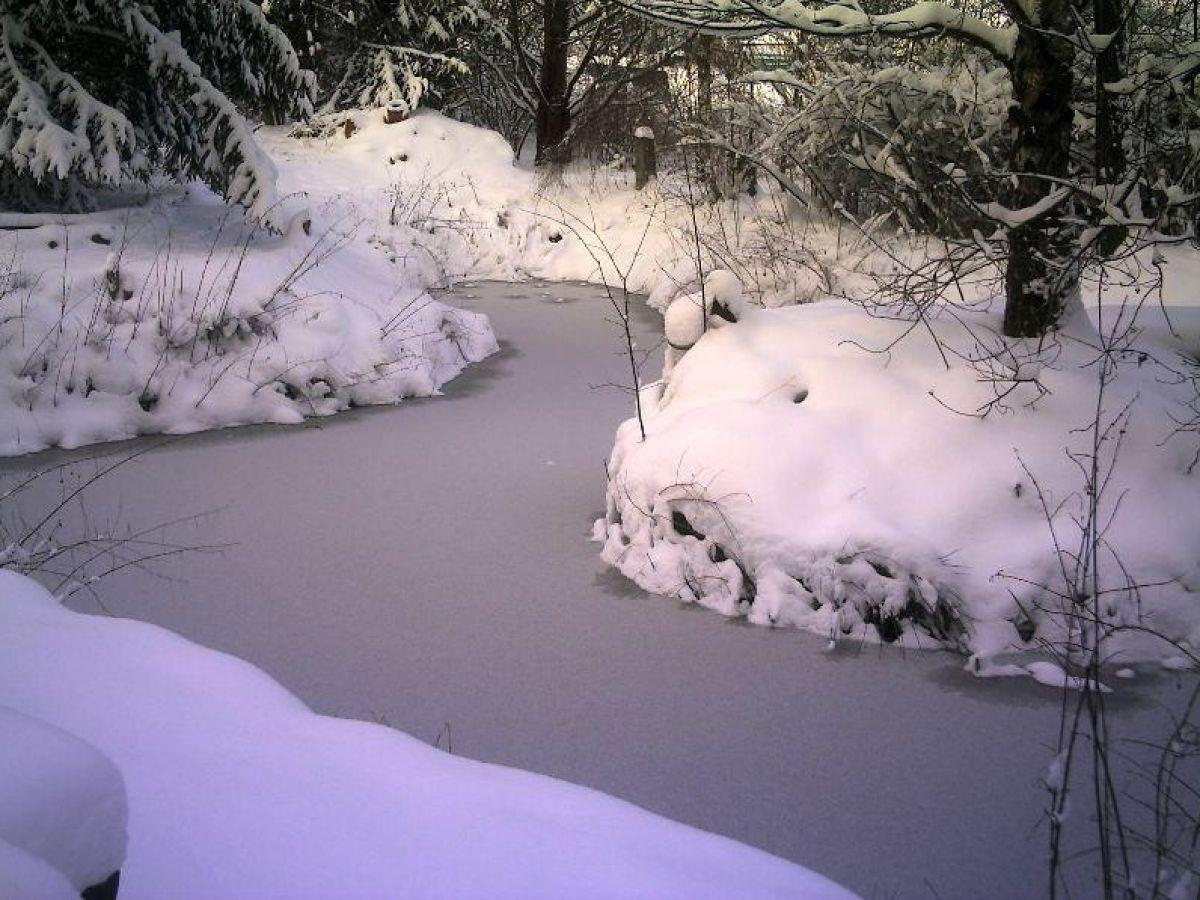 Ferienwohnung maria ward haus bayrisch schwaben for Gartenteich im winter