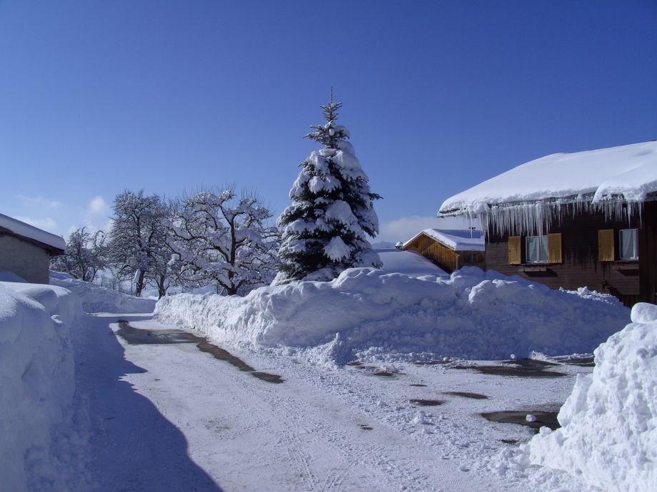 Wintertraum
