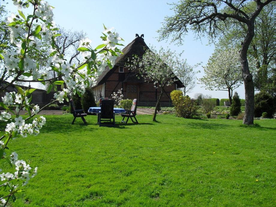 Obstgarten mit Altbaumbestand