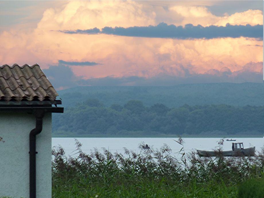 Blick auf den Malchiner See