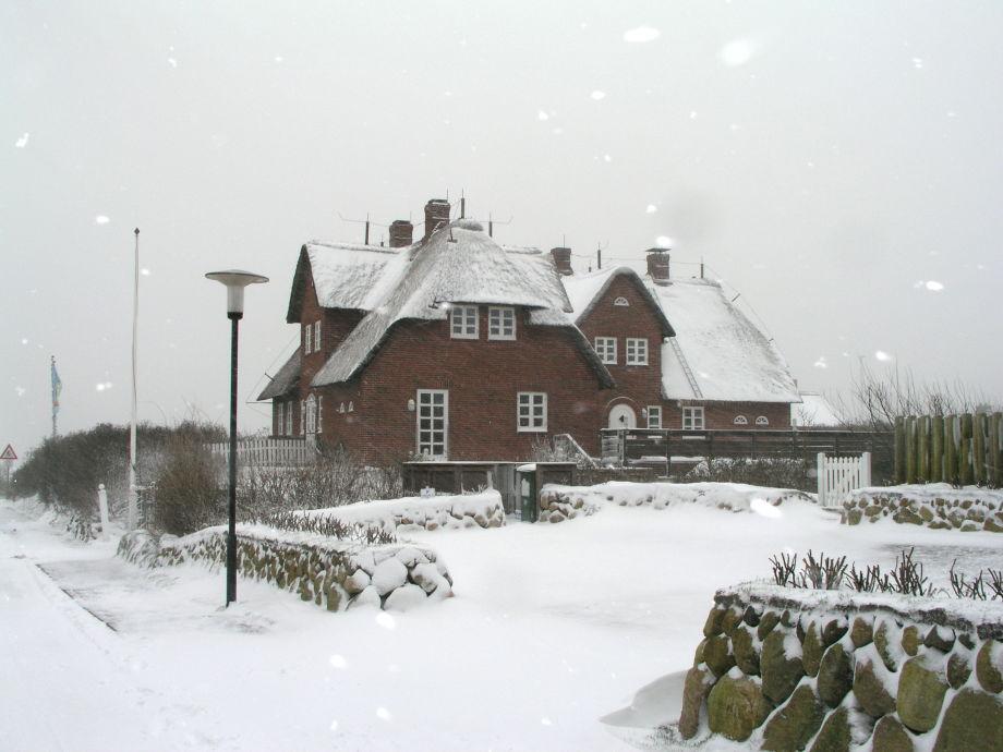 Friesenhof im Winter