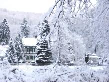 Ferienwohnung Wald-Blick im Alten Forstamt