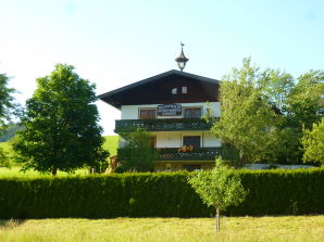Holiday apartment Apartment Gsenger Abtenau
