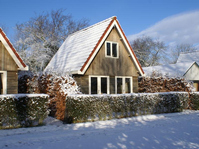 Ferienhaus Duinvoet