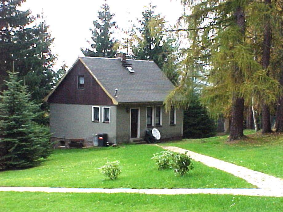 Ferienhaus am Wald im Sommer