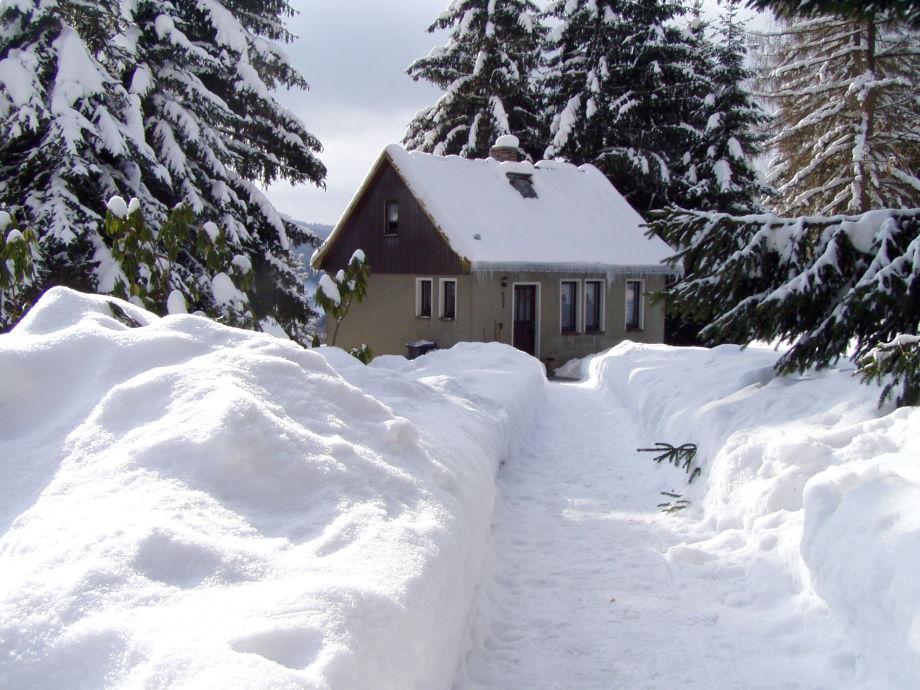 Ferienhaus am Wald im Winter