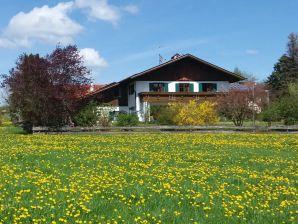 """Ferienwohnung """"Sternenhimmel"""" im Ferienhaus Allgäu"""