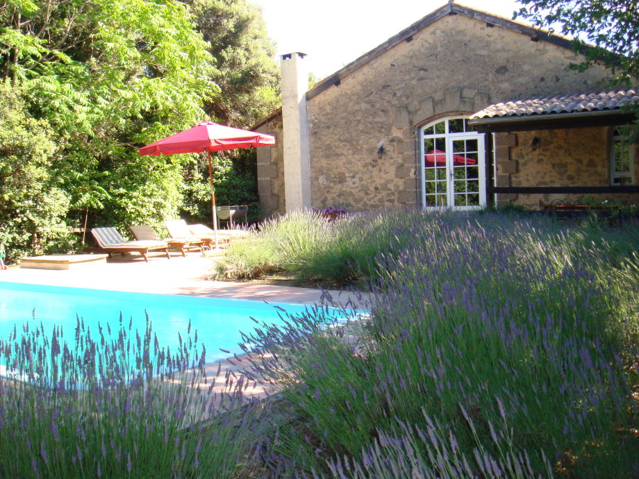 Private pool and Lavander Garden