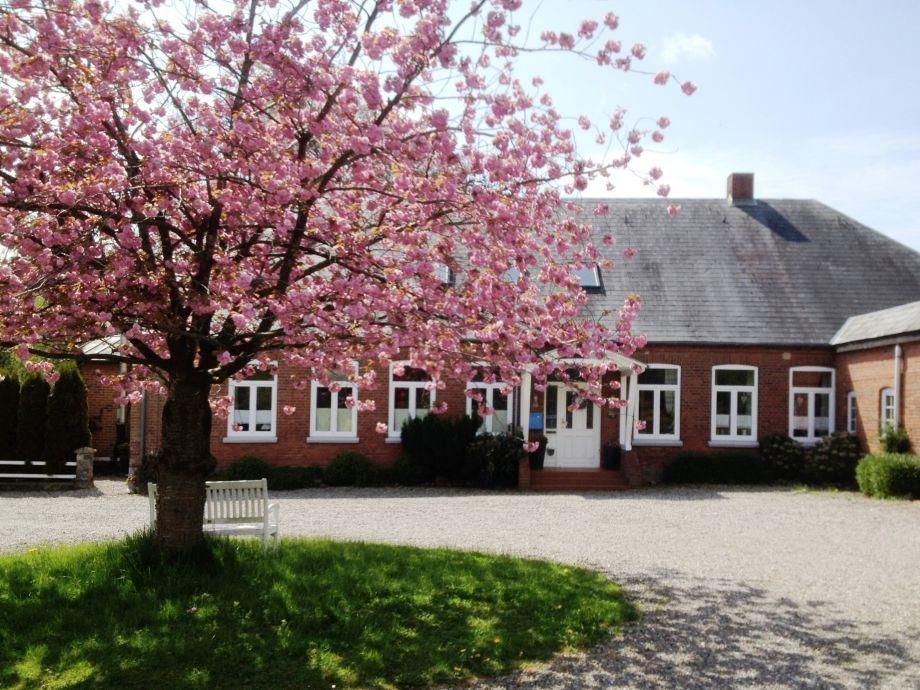 Landhaus Scholz mit drei 4 Sterne Ferienwohnungen