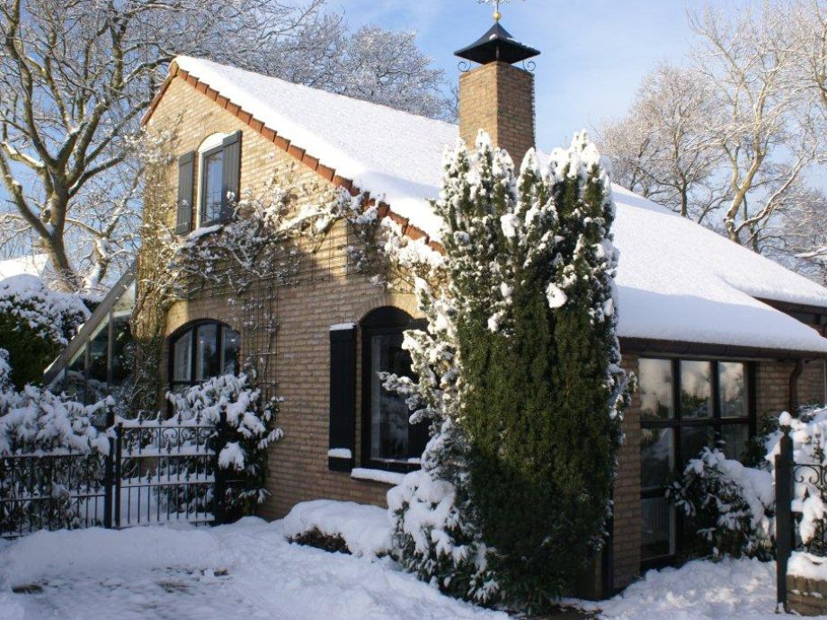 The house (winter)