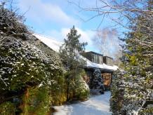 Apartment - Ferienapartment Bergen NH